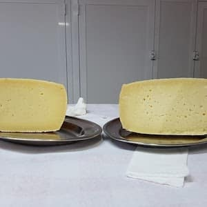A Guide to Italian Raw Milk Cheese